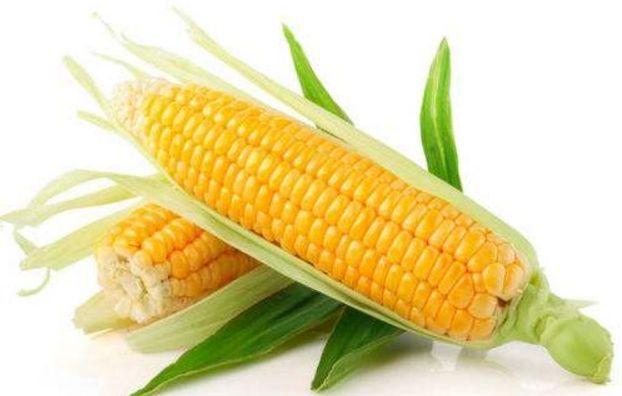 2019年5月5日全国各地玉米价格最新行情一览