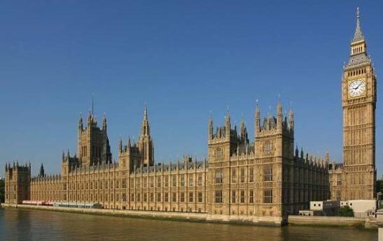 英国议会鼠患成灾 是时候养些猫了?